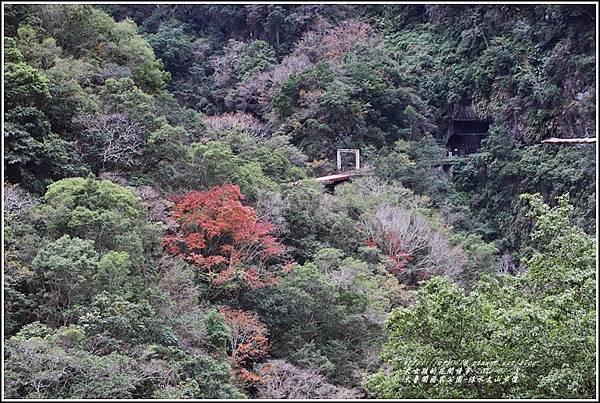 太魯閣水文山步道-2021-01-02.jpg
