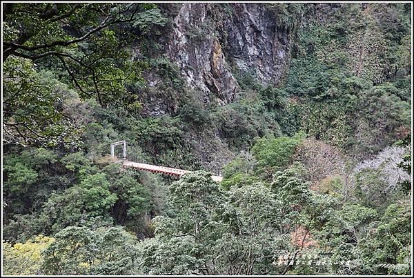 太魯閣水文山步道-2021-01-33.jpg