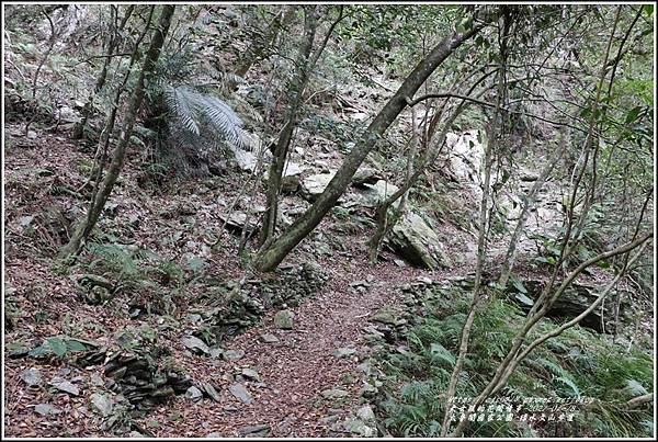 太魯閣水文山步道-2021-01-49.jpg