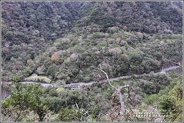 太魯閣水文山步道-2021-01-78.jpg