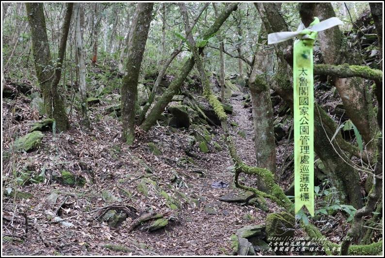 太魯閣水文山步道-2021-01-123.jpg