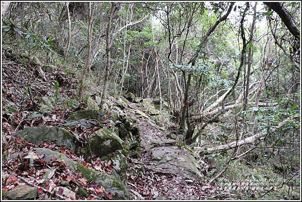 太魯閣水文山步道-2021-01-131.jpg