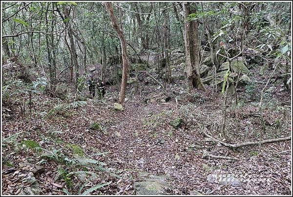 太魯閣水文山步道-2021-01-133.jpg