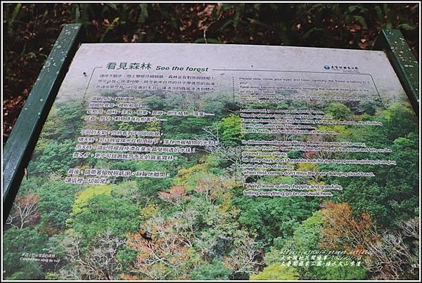 太魯閣水文山步道-2021-01-126.jpg