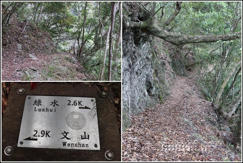 太魯閣水文山步道-2021-01-143.jpg