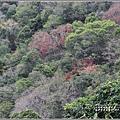太魯閣水文山步道-2021-01-157.jpg