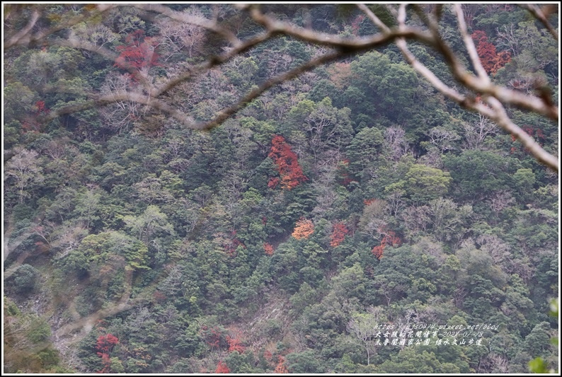 太魯閣水文山步道-2021-01-191.jpg