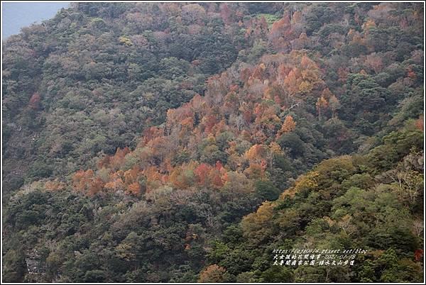 太魯閣水文山步道-2021-01-240.jpg