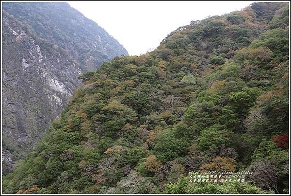 太魯閣水文山步道-2021-01-251.jpg