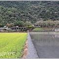 南安油菜花田-2021-01-35.jpg