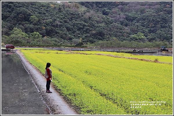 南安油菜花田-2021-01-39.jpg