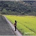 南安油菜花田-2021-01-42.jpg