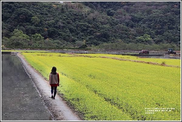 南安油菜花田-2021-01-41.jpg