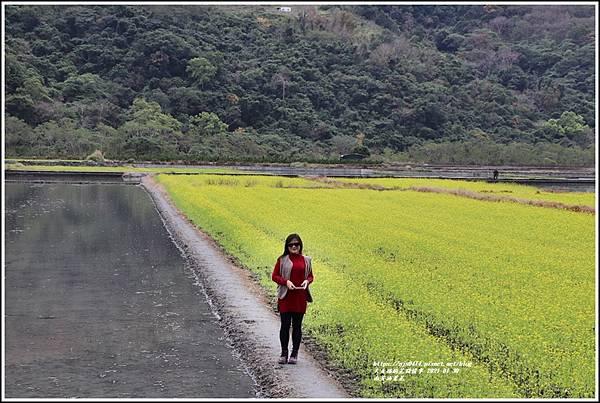 南安油菜花田-2021-01-43.jpg