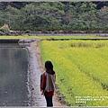 南安油菜花田-2021-01-47.jpg