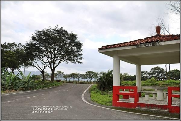 鳳林溪水岸黃波斯-2021-02-56.jpg