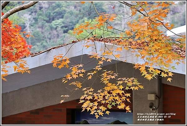 綠水地質館楓紅-2020-01-04.jpg
