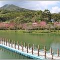 大加汗碧赫潭櫻花-2021-02-69.jpg