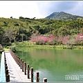 大加汗碧赫潭櫻花-2021-02-66.jpg