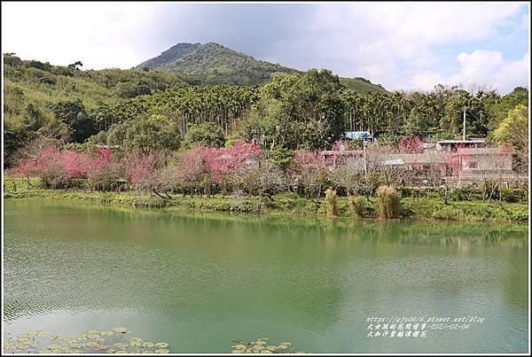 大加汗碧赫潭櫻花-2021-02-75.jpg