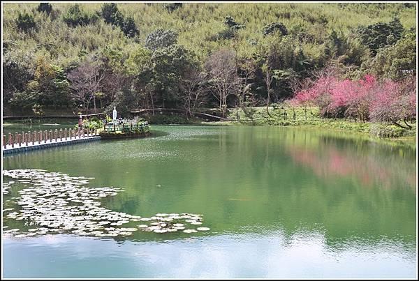 大加汗碧赫潭櫻花-2021-02-78.jpg