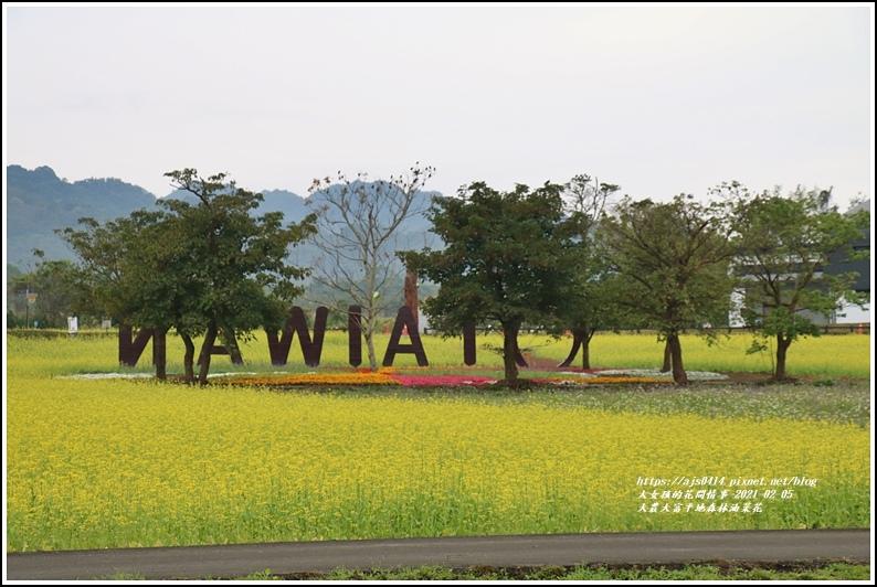 大農大富平地森林油菜花-2021-02-01.jpg