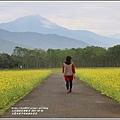 大農大富平地森林油菜花-2021-02-09.jpg