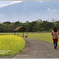 大農大富平地森林油菜花-2021-02-20.jpg