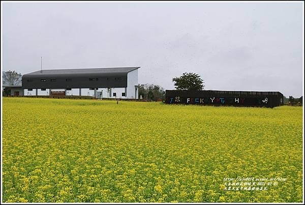 大農大富平地森林油菜花-2021-02-33.jpg