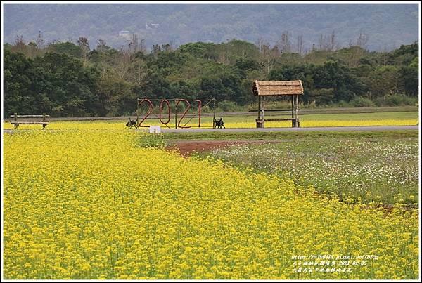 大農大富平地森林油菜花-2021-02-35.jpg
