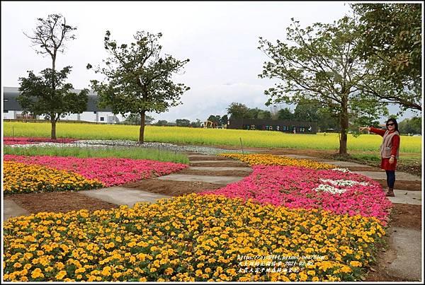 大農大富平地森林油菜花-2021-02-42.jpg
