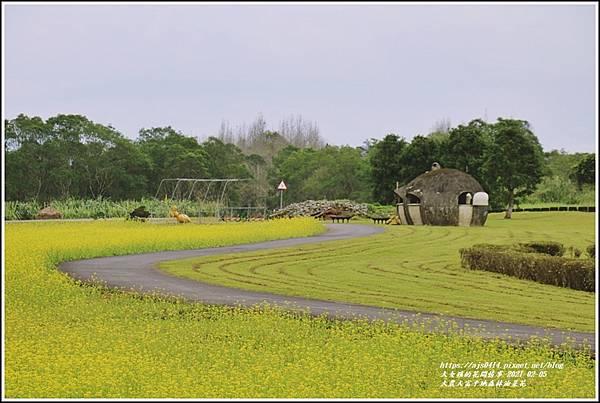 大農大富平地森林油菜花-2021-02-47.jpg