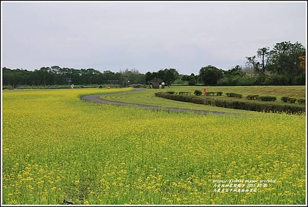 大農大富平地森林油菜花-2021-02-46.jpg