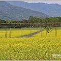 大農大富平地森林油菜花-2021-02-61.jpg