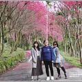 鳳林櫻花步道-2021-02-17.jpg
