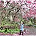 鳳林櫻花步道-2021-02-48.jpg