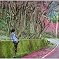 鳳林櫻花步道-2021-02-69.jpg
