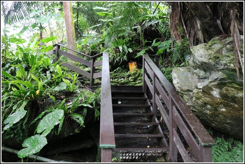 樹湖櫻花步道-2021-02-62.jpg