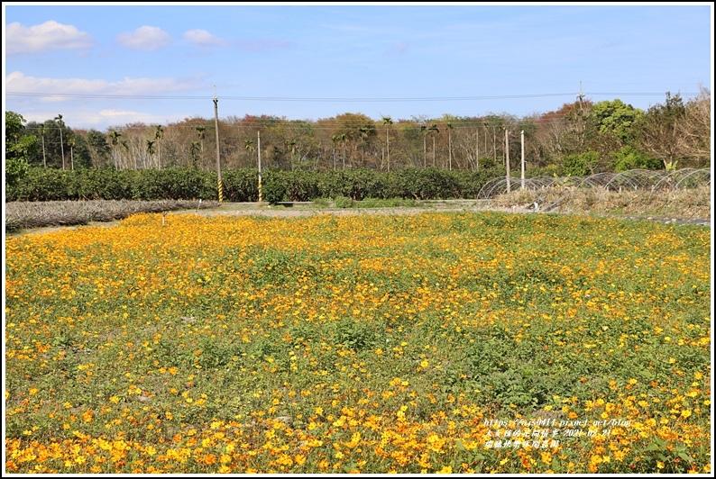 瑞穗快樂休閒農園-2021-02-25.jpg