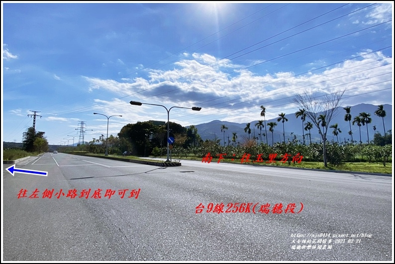 瑞穗快樂休閒農園-2021-02-80.jpg