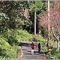玉山神學院櫻花-2021-02-37.jpg