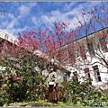 玉山神學院櫻花-2021-02-79.jpg