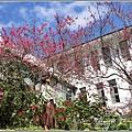 玉山神學院櫻花-2021-02-76.jpg