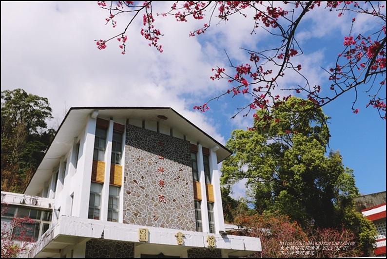 玉山神學院櫻花-2021-02-86.jpg