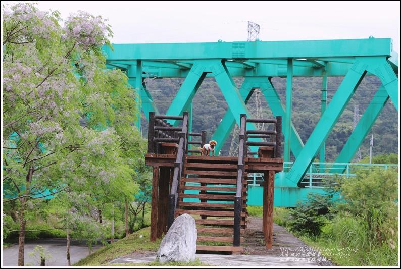 紅葉溪防汛道路苦楝花-2021-03-06.jpg