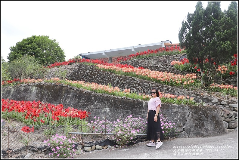 富里石牌孤挺花-2021-04-72.jpg