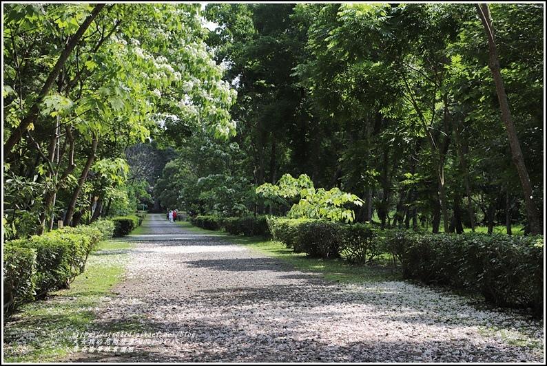 吉安南華林業園區-2021-04-21.jpg