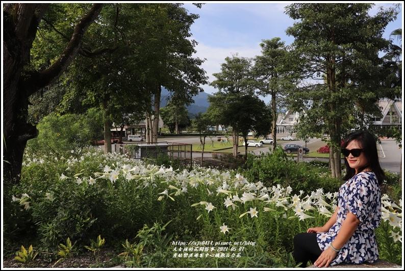 秀姑巒溪遊客中心鐵炮百合花-2021-05-63.jpg