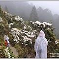 合歡山小奇萊步道玉山杜鵑-2021-04-24.jpg