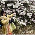 合歡山小奇萊步道玉山杜鵑-2021-04-45.jpg
